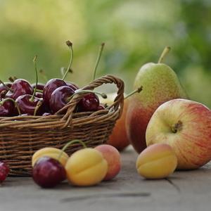 Саженцы плодовых,  ягодных и роз
