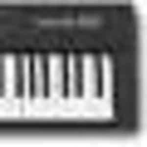 Roland A33